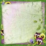 Priorità bassa con i fiori del pansy Fotografia Stock Libera da Diritti