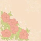 Priorità bassa con i fiori delle rose selvatiche Immagine Stock