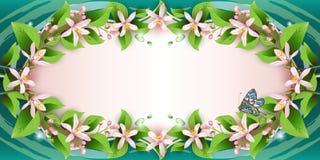 Priorità bassa con i fiori fragili illustrazione di stock