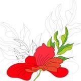 Priorità bassa con i fiori rossi Fotografie Stock Libere da Diritti
