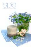 Priorità bassa con i fiori. stazione termale Fotografie Stock Libere da Diritti