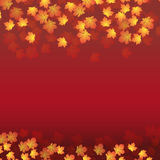 Priorità bassa con i fogli di autunno Fotografie Stock Libere da Diritti