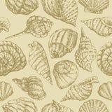 Priorità bassa con i seashells illustrazione di stock