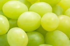 Priorità bassa con l'uva Immagine Stock