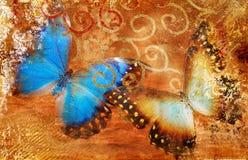 Priorità bassa con le farfalle Fotografia Stock