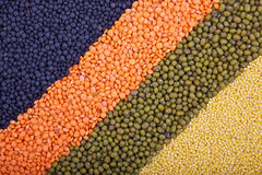 Priorità bassa con le righe dei cereali Immagine Stock