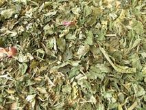 Priorità bassa con tè di erbe allentato Immagini Stock