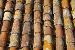 Priorità bassa coperta di tegoli del tetto Immagini Stock