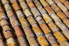 Priorità bassa coperta di tegoli del tetto Immagine Stock Libera da Diritti