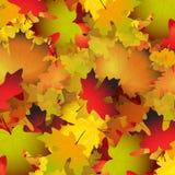 Priorità bassa d'autunno Fotografia Stock