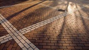 Priorità bassa d'autunno della città Fotografia Stock Libera da Diritti