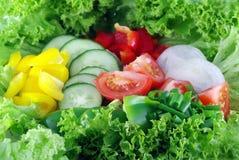 Priorità bassa dalle verdure Immagine Stock Libera da Diritti