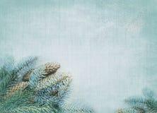 Priorità bassa decorativa di inverno Fotografie Stock Libere da Diritti