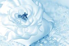 Priorità bassa degli anelli di cerimonia nuziale Fotografie Stock