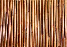 Priorità bassa dei bastoni di bambù immagine stock libera da diritti