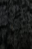Priorità bassa dei capelli Fotografia Stock