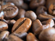 Priorità bassa dei chicchi di caffè Immagine Stock