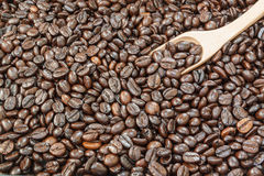 Priorità bassa dei chicchi di caffè Fotografia Stock
