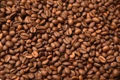 Priorità bassa dei chicchi di caffè Fotografia Stock Libera da Diritti