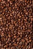 Priorità bassa dei chicchi di caffè del Brown Fotografie Stock Libere da Diritti