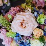 Priorità bassa dei fiori fotografia stock