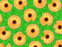 Priorità bassa dei fiori arancioni e del foglio verde fotografia stock libera da diritti
