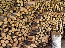 Priorità bassa dei libri macchina tagliati asciutti della legna da ardere Fotografie Stock