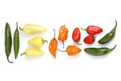 Priorità bassa dei peperoni caldi Immagine Stock Libera da Diritti