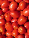 Priorità bassa dei pomodori Immagini Stock Libere da Diritti