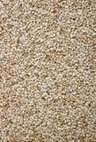 Priorità bassa dei semi di sesamo Fotografia Stock
