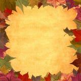 Priorità bassa del blocco per grafici del grunge dei fogli di autunno Fotografie Stock