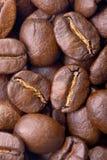 Priorità bassa del caffè Immagini Stock Libere da Diritti