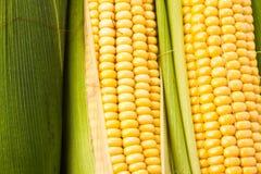 Priorità bassa del cereale Immagini Stock Libere da Diritti