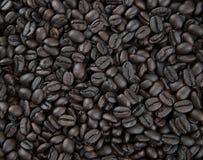 Priorità bassa del chicco di caffè Immagini Stock