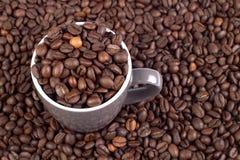 Priorità bassa del chicco di caffè con la tazza Immagine Stock Libera da Diritti
