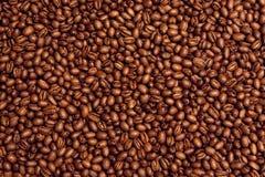 Priorità bassa del chicco di caffè di Kona Immagini Stock Libere da Diritti