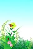 Priorità bassa del fiore della natura Fotografia Stock Libera da Diritti