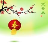 Priorità bassa del fiore della prugna con le lanterne cinesi rosse royalty illustrazione gratis