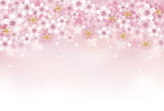 Priorità bassa del fiore di ciliegia illustrazione di stock