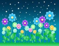 Priorità bassa del fiore di notte Fotografie Stock Libere da Diritti