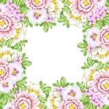 Priorità bassa del fiore fresco Fotografia Stock Libera da Diritti