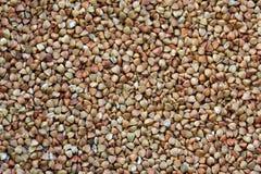 Priorità bassa del grano saraceno Fotografie Stock Libere da Diritti