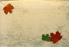 Priorità bassa del grunge di autunno Fotografie Stock Libere da Diritti