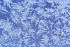 Priorità bassa del Hoar-frost immagini stock libere da diritti
