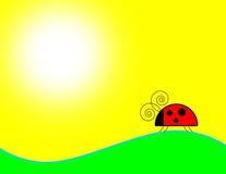 Priorità bassa del Ladybug Fotografia Stock Libera da Diritti