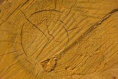 Priorità bassa del legname Fotografia Stock Libera da Diritti
