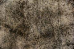 Priorità bassa del muro di cemento fotografie stock libere da diritti