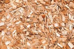 Priorità bassa del pacciame del Cypress Immagini Stock Libere da Diritti