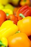 Priorità bassa del peperone dolce Immagini Stock