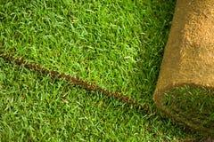 Priorità bassa del rullo dell'erba del tappeto erboso Fotografie Stock